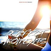 Play & Download Perfect Moments by Various Artists | Napster