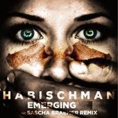 Emerging by Habischman