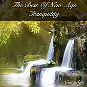 The Best of New Age Tranquility by New Age