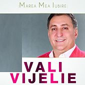 Play & Download Marea Mea Iubire by Vali Vijelie | Napster
