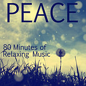Peace: 80 Minutes of Relaxing Music for Massage and Therapeutic Relaxation by Various Artists