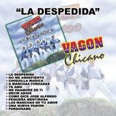Play & Download La Despedida by Vagon Chicano | Napster