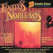 Exitos Norteños - 16 Grandes Éxitos by Various Artists