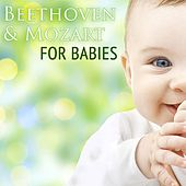 Play & Download Beethoven & Mozart For Babies by Various Artists | Napster