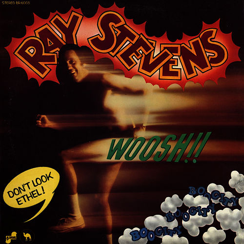 Boogity Boogity by Ray Stevens