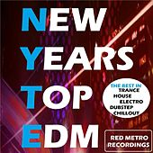 Play & Download New Years Top EDM - EP by Various Artists | Napster