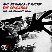 Play & Download The Sensation (NG Rezonance & PhD Remix) by Ant Reynolds | Napster