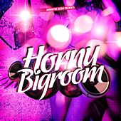 Horny Bigroom by Various Artists