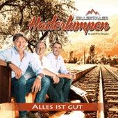 Play & Download Alles ist gut by Zillertaler Haderlumpen | Napster