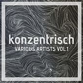 Play & Download Konzentrisch, Vol. 1 by Various Artists | Napster