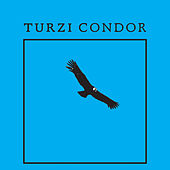 Play & Download Condor - EP by turzi | Napster