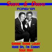Sam & Dave Forever von Sam and Dave