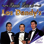 Play & Download Grandes Éxitos de los Dandy's - 14 Éxitos by Los Dandys | Napster