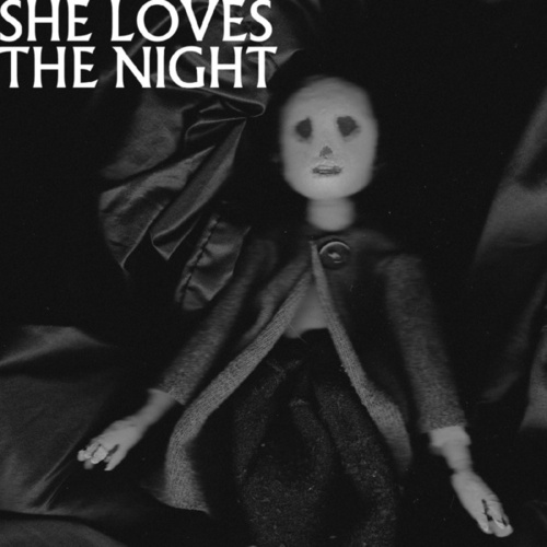 Play & Download She Loves The Night by Then Comes Silence | Napster