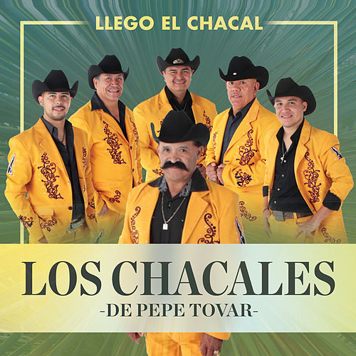 Play & Download Llego el Chacal by Los Chacales de Pepe Tovar | Napster