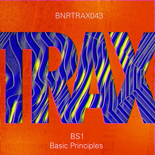 Basic Principles by BS1