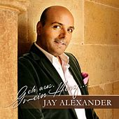 Play & Download Geh aus, mein Herz (Jay Alexander singt die schönsten Kirchenlieder) by Various Artists | Napster