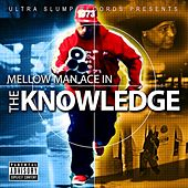 Play & Download The Knowledge - Single by Mellow Man Ace | Napster