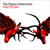 Wait For Me by The Pigeon Detectives