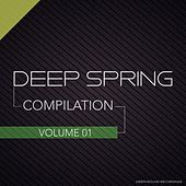 Deep Spring - Compilation Vol. 1 by Various Artists