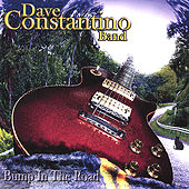 Bump In The Road by Dave Constantino