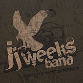 Play & Download Unsystematic Approach by JJ Weeks Band | Napster