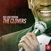 Play & Download The Love Potion: The Clovers by The Clovers | Napster