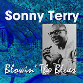 Play & Download Blowin' the Blues by Sonny Terry | Napster