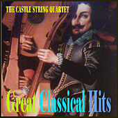 Great Classical Hits von Various Artists