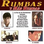 Rumbas y Más Rumbas by Various Artists