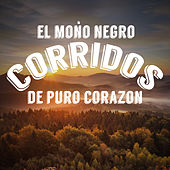 Play & Download El Mono Negro: Corridos de Puro Corazon by Various Artists | Napster