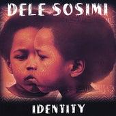 Identity by Dele Sosimi