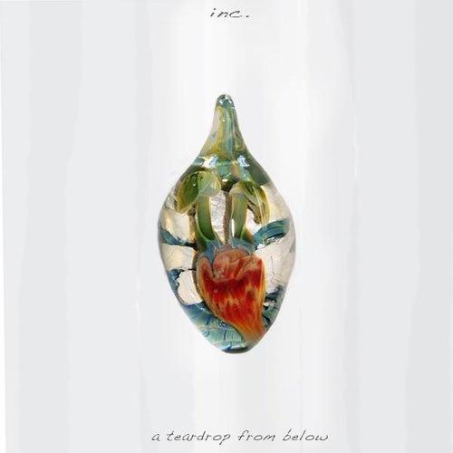 A Teardrop from Below by Inc.