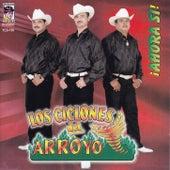 Ahora si by Los Ciclones del Arroyo