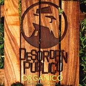 Play & Download Orgánico by Desorden Público | Napster