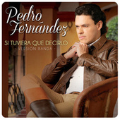 Play & Download Si Tuviera Que Decirlo by Pedro Fernandez | Napster