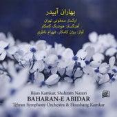 Baharan-E Abidar by Various Artists