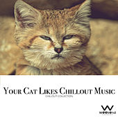 Play & Download Your Cat Likes Chillout Music - Chillout Collection by Various Artists | Napster