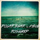 Play & Download Rosehip - Single by Polar Bear | Napster