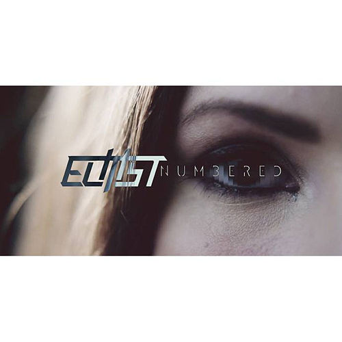 Play & Download Numbered by Elitist | Napster