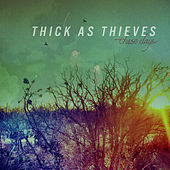 Play & Download These Days by Thick as Thieves | Napster