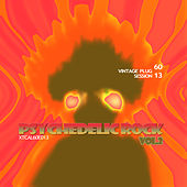 Vintage Plug 60: Session 13 - Psychedelic Rock, Vol. 2 by Various Artists