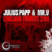 Chicago Tribute 2011 by Mr. V