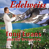 Play & Download Edelweiss by Tony Evans | Napster
