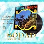 Play & Download Interpreta Temas de Bulimundo (Sodad Serie 2 - Vol. 1) by Tulipa Negra | Napster