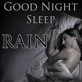 Good Night Sleep by Various Artists