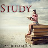 Study Exam Relaxation by Various Artists
