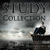 Play & Download STUDY Collection by Various Artists | Napster