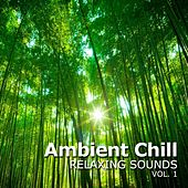 Ambient Chill, Vol. 1 (Relaxing Sounds) by Various Artists