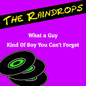 Play & Download What a Guy by The Raindrops | Napster